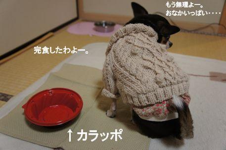 食べる11
