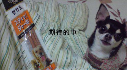 20110303220640.jpg