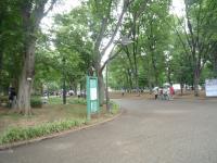 上野公園1020376_convert_20110803111913
