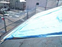 屋根P1020425_convert_20110809101352