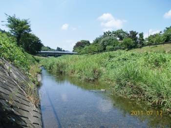 川の風景WEB