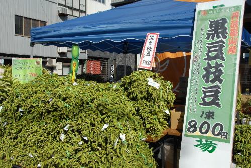 sasayama#03