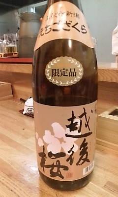 echigozakura090822.jpg