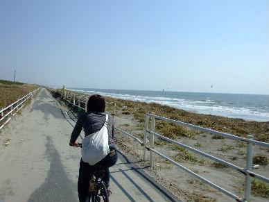 2009_1018子亀ミニ亀0041