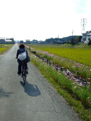 2009_1107遠州ポート0038