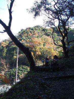 2009_1212東海道散歩0038