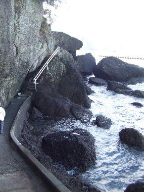2010_0109松崎0061