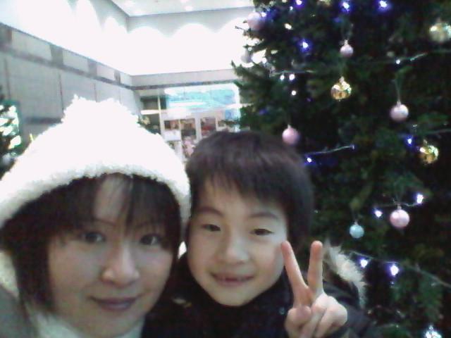マリオスのクリスマスツリー
