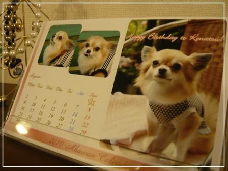 2009-12-16-02.jpg