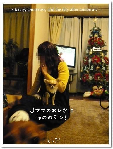 2009-12-19-006.jpg