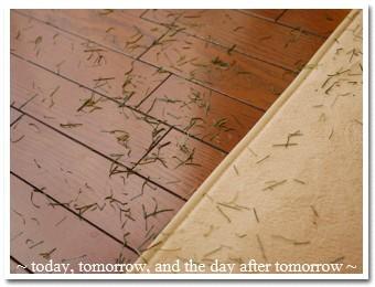 2009-12-26-01.jpg