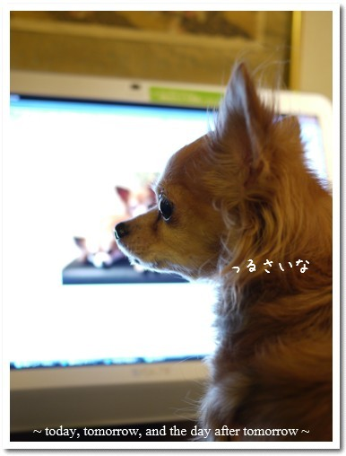 2010-01-09-01.jpg