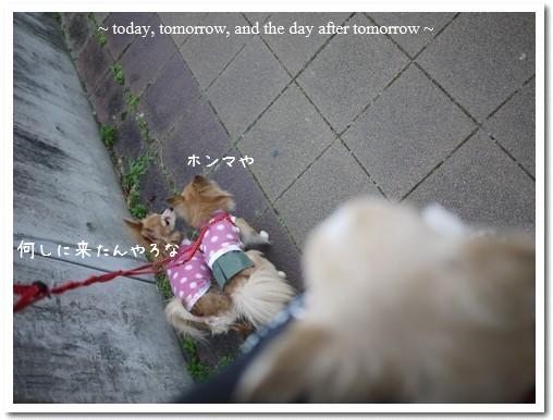 2010-01-12-04.jpg