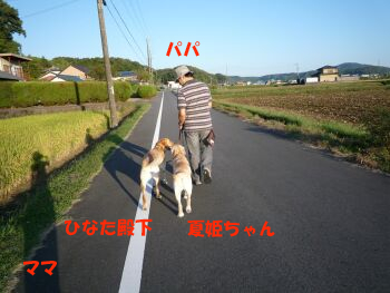 P1010502-p.jpg