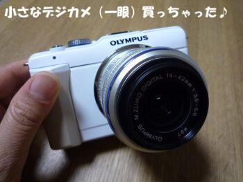 P1090609-110521.jpg