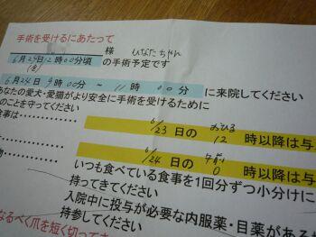 P1090741-110620.jpg