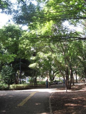 府中の森公園2