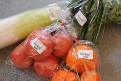 Vegetable_photo