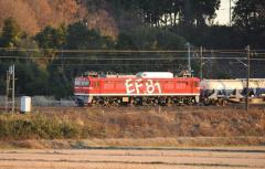 EF81_19