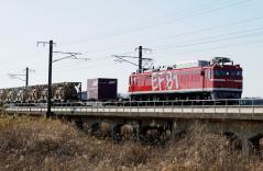 EF81_55
