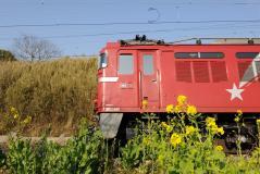 EF81_84