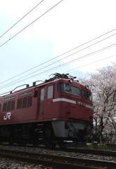 EF81_64
