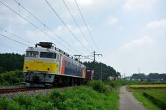 EF81_245
