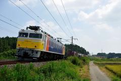 EF81_258