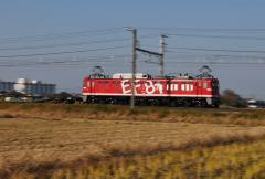 EF81_310