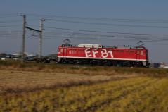 EF81_317