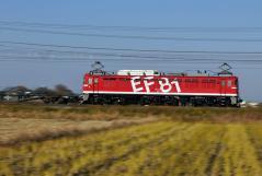 EF81_311