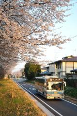 Kashitetsu bus_11