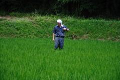 Wataribune 2011_29