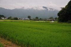 Wataribune 2011_39