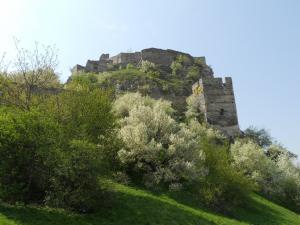 デヴィーン城/Devinsky hrad