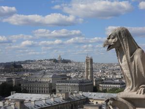 ノートルダム寺院上から/on Cathedrale Notre-Dame de Paris