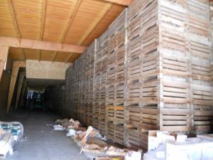 たまねぎ倉庫/Onion storehouse