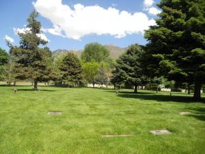 共同墓地/A cemetery