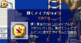 929獲得コイン