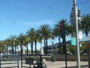 サンフランシスコの街散策18