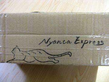 Nyanta Express