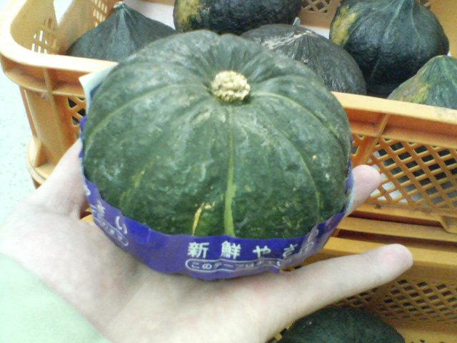手乗りかぼちゃ②