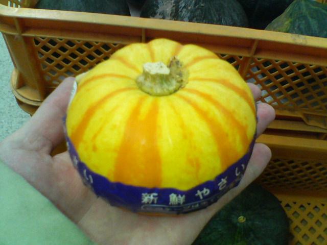 手乗りかぼちゃ③