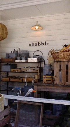 chabbit 002