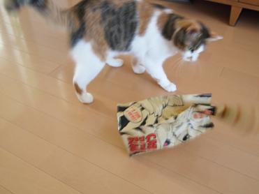 Purikoさんのおもちゃ5