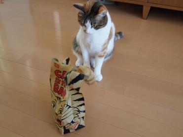 Purikoさんのおもちゃ2
