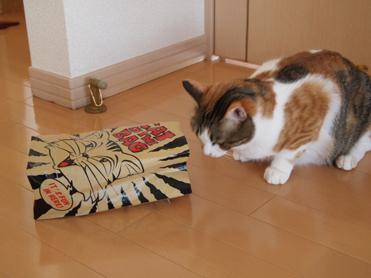 Purikoさんのおもちゃ12