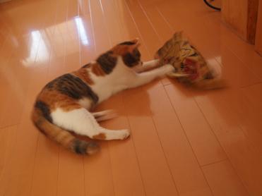 Purikoさんのおもちゃ9