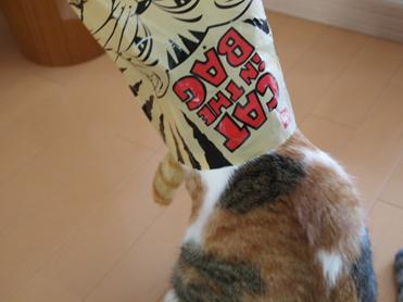 Purikoさんのおもちゃ16