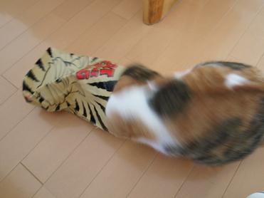 Purikoさんのおもちゃ13